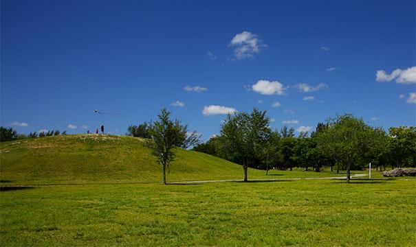 a rare hill in South Florida, at Tropical Park
