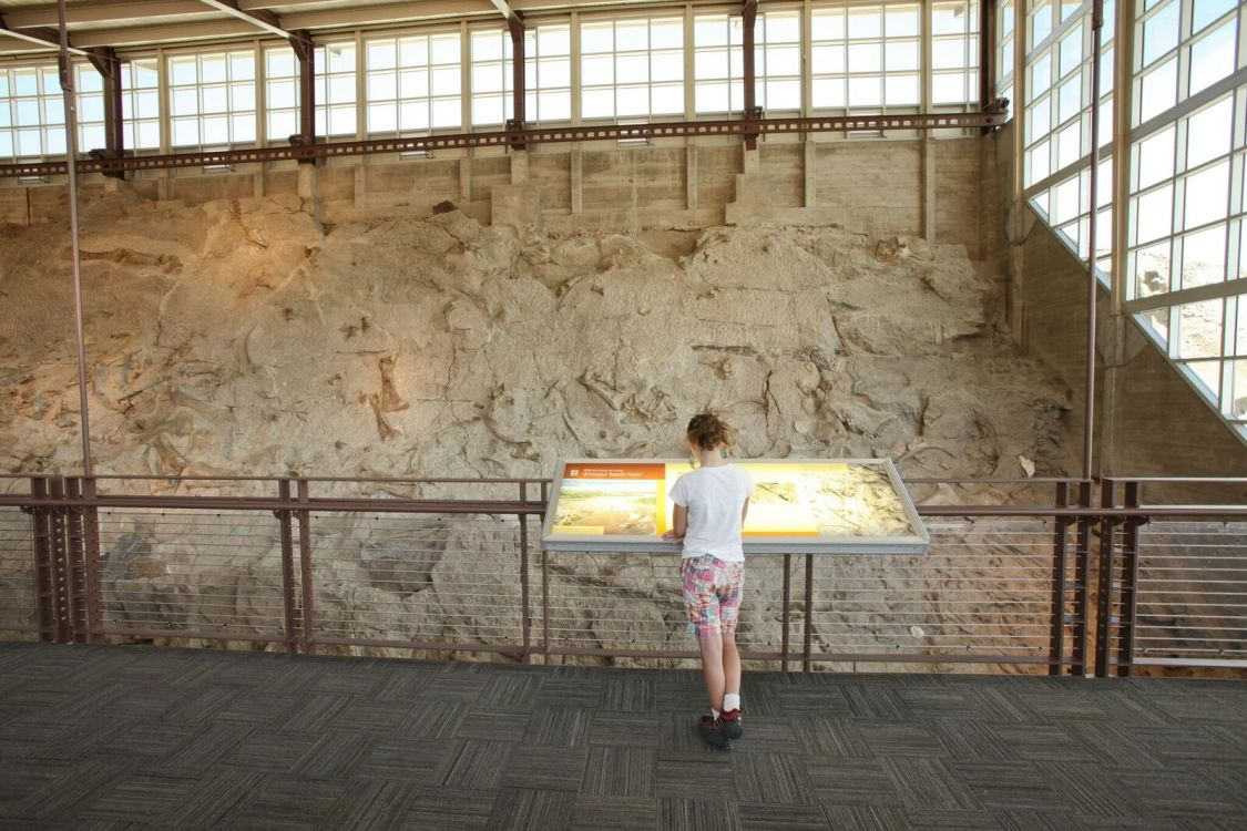 Dinosaur National Park: How Travelers Can Give Back
