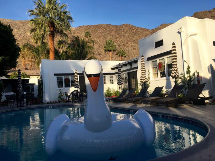 giant swan float in Amin Casa pool