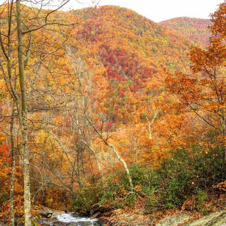 brilliant autumn colors at Crabtree Falls