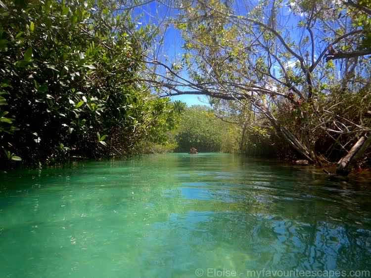 things to do in Tulum Mexico: cenote. photo by Eloise, MyFavouriteEscapes.com