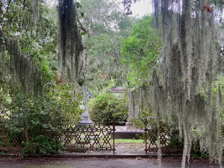 Spanish moss and romantic scene at Bonaventure Cemetery