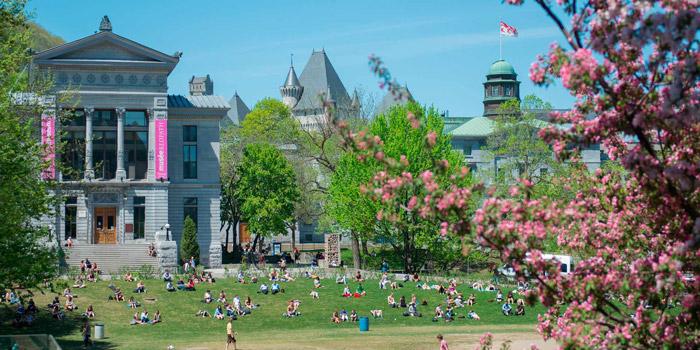 McGill Lower Field