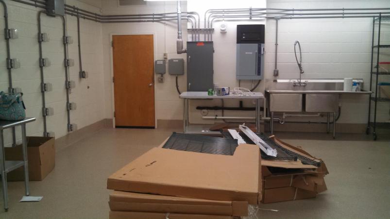 lizard lab empty 2