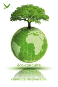 contact eco-conduite