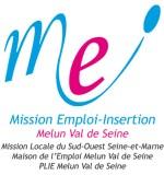 logo-meimvs