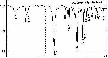 Qualitative Analysis of Gamma-Bu