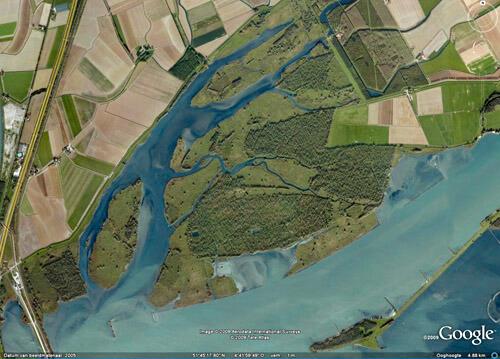 Drie gebieden - Biesbosch