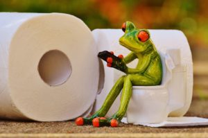 frog on toilet next to tissue roll