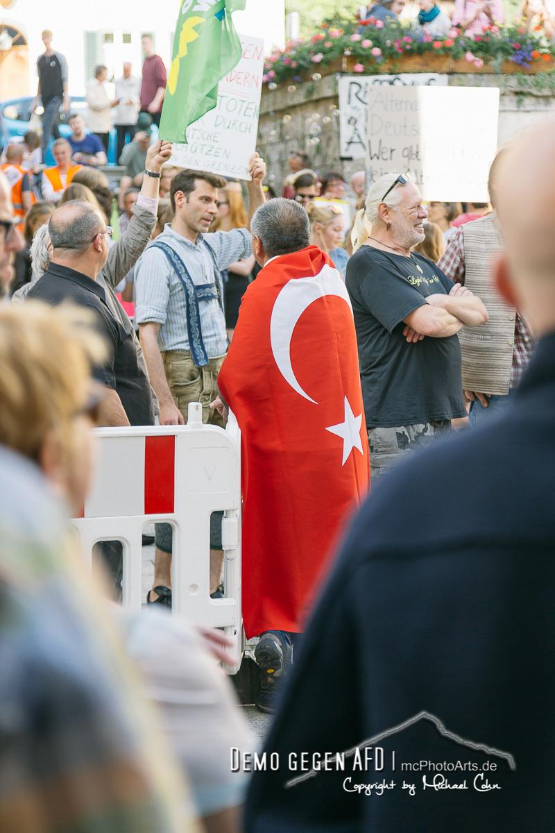 Demo gegen die AfD  mcPhotoArts