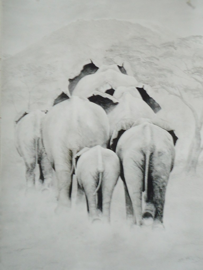 A water colour painting of a elephants walking away by Keith Cains.