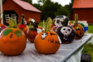 pumpkin_panache-festival-brooksided-gardens