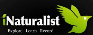 iNaturalist-logo