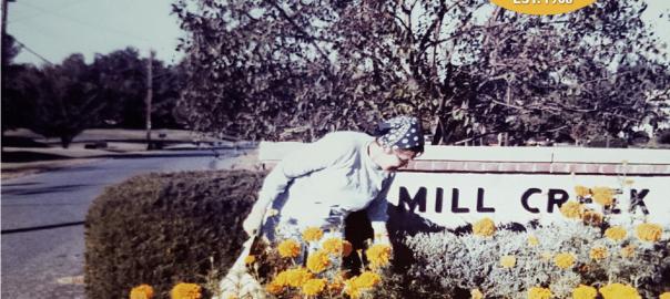 Roslyn Entrance Spring 1978