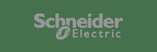 Schneider Electric Customer Logo