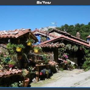 Casa llena de flores en Tene