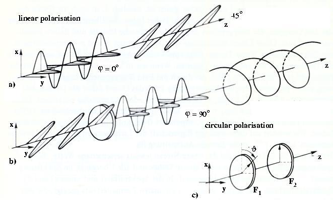 Wave Orthogonal