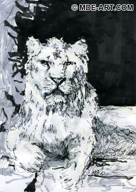 A Pen Drawing of a Lion