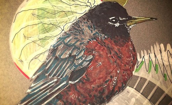 Drawing of a Robin