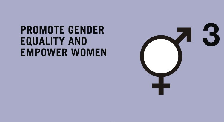 mdg  promote gender equality and empower women mdg  promote gender equality and empower women