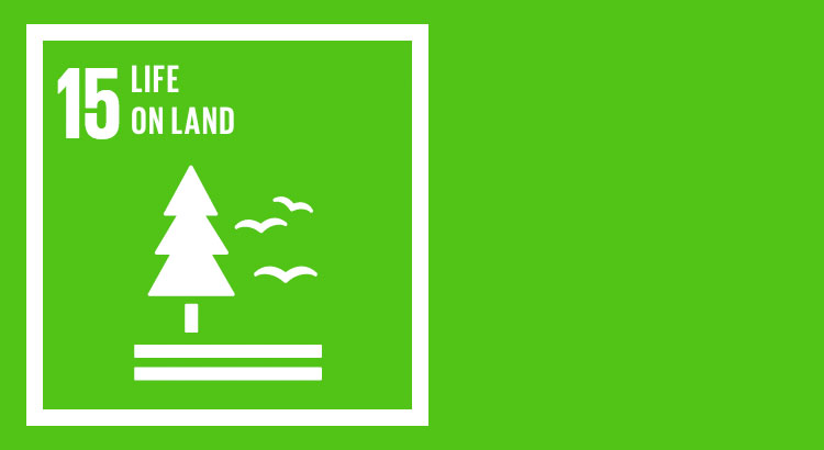 SDG 15 - Sustain Life on Land - Forest, Ground and Animals