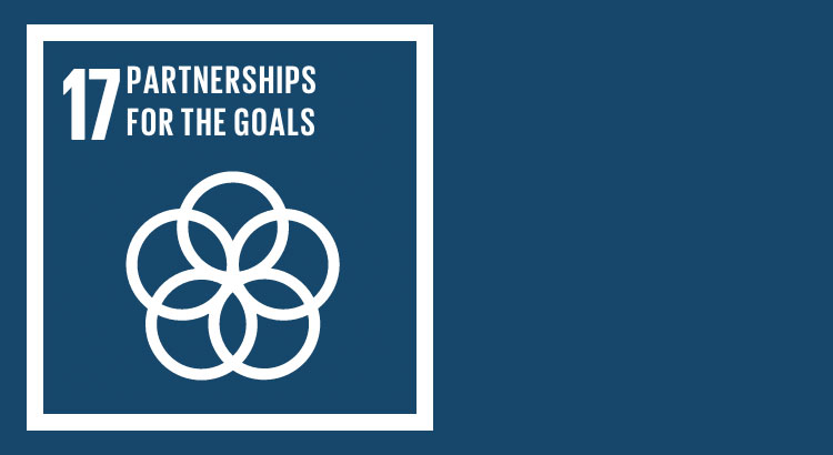SDG 17 - Sustainable development through global partnerships