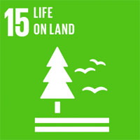 SDG 15 – Sustain Life on Land – Forest, Ground and Animals
