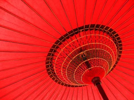 tokyo umbrella may 2008 small size