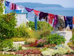 Downeast Laundry by Judith Bradshaw Brown