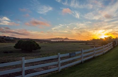 Marlene Hubbard Mission Ranch, Carmel CA Share