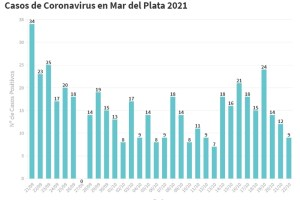 Mar del Plata cierra la semana con 9 nuevos casos