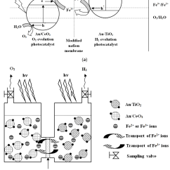 How To Make An Electron Dot Diagram 7 Way Trailer Wiring Ford F250 For Cl2 Database H2 Bond Hcl Chemengineering Free Full Text Hydrogen And Oxygen