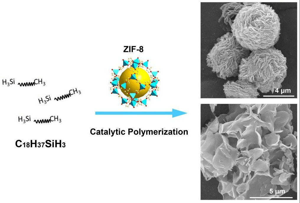 Catalysts  Free FullText  Polymerization of