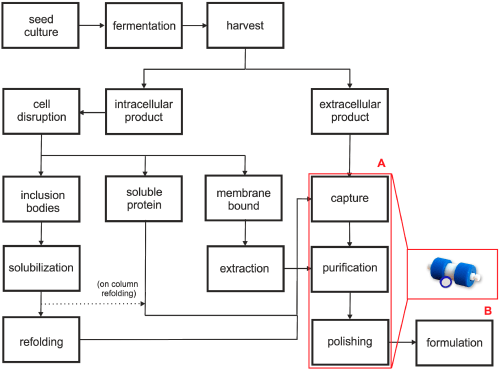 small resolution of chromatography 02 00195 g001 figure 1 schematic diagram