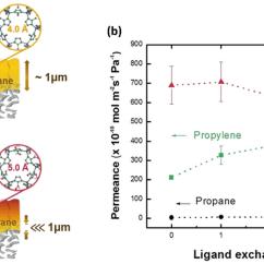 Propylene Phase Diagram 1996 Ford Ranger Wiring Liquid Vapor Propane Propene Online Crystals Free Full Text Zeolitic Imidazolate Framework Membranes Equilibrium Curve