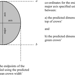 Forest Canopy Diagram Onan Generator Starter Wiring Forests Free Full Text A Methodology For Modelling