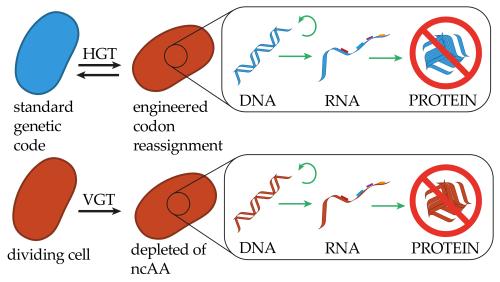 small resolution of genes 10 00017 g002
