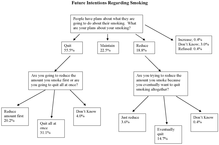 IJERPH Special Issue Tobacco Smoking Public Health Science And