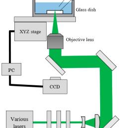 encyclopedia diagram etching use wiring diagram encyclopedia diagram etching [ 1574 x 2194 Pixel ]