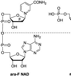 molecules 19 15754 g001 [ 3725 x 1372 Pixel ]