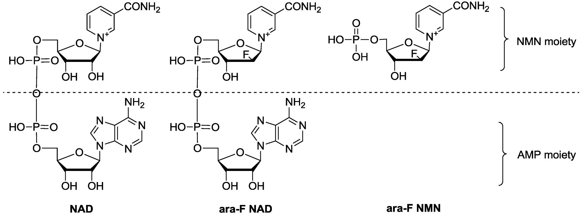 hight resolution of molecules 19 15754 g001