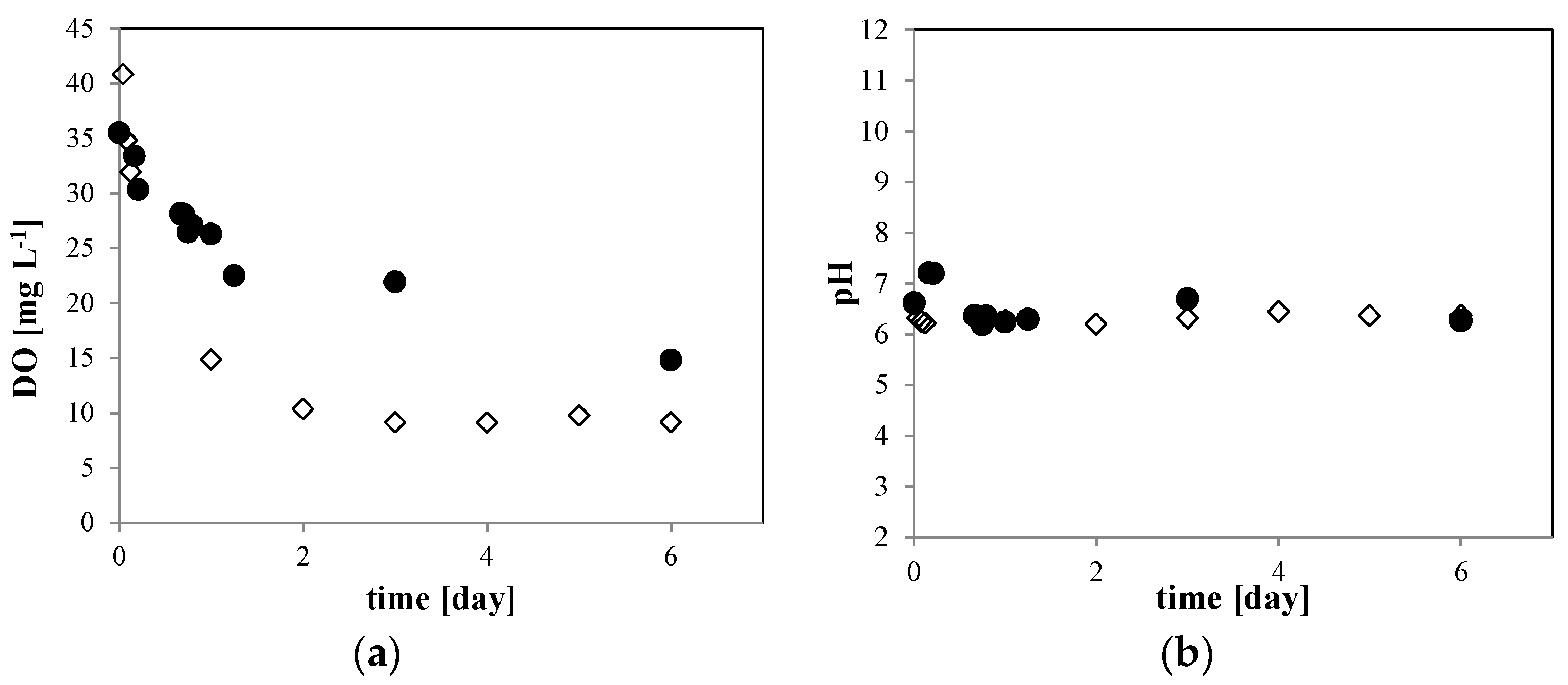 Physiological Density Japan