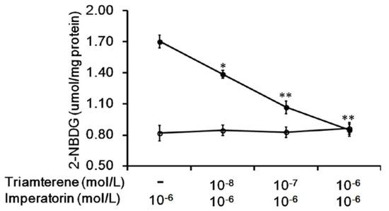 Hyaluronic acid : Hyaluronic acid serum walmart