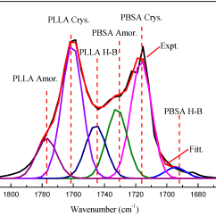 Polyethylene Phase Diagram Parts Of A Tree Trunk Polymers Free Full Text Miscibility Morphology And