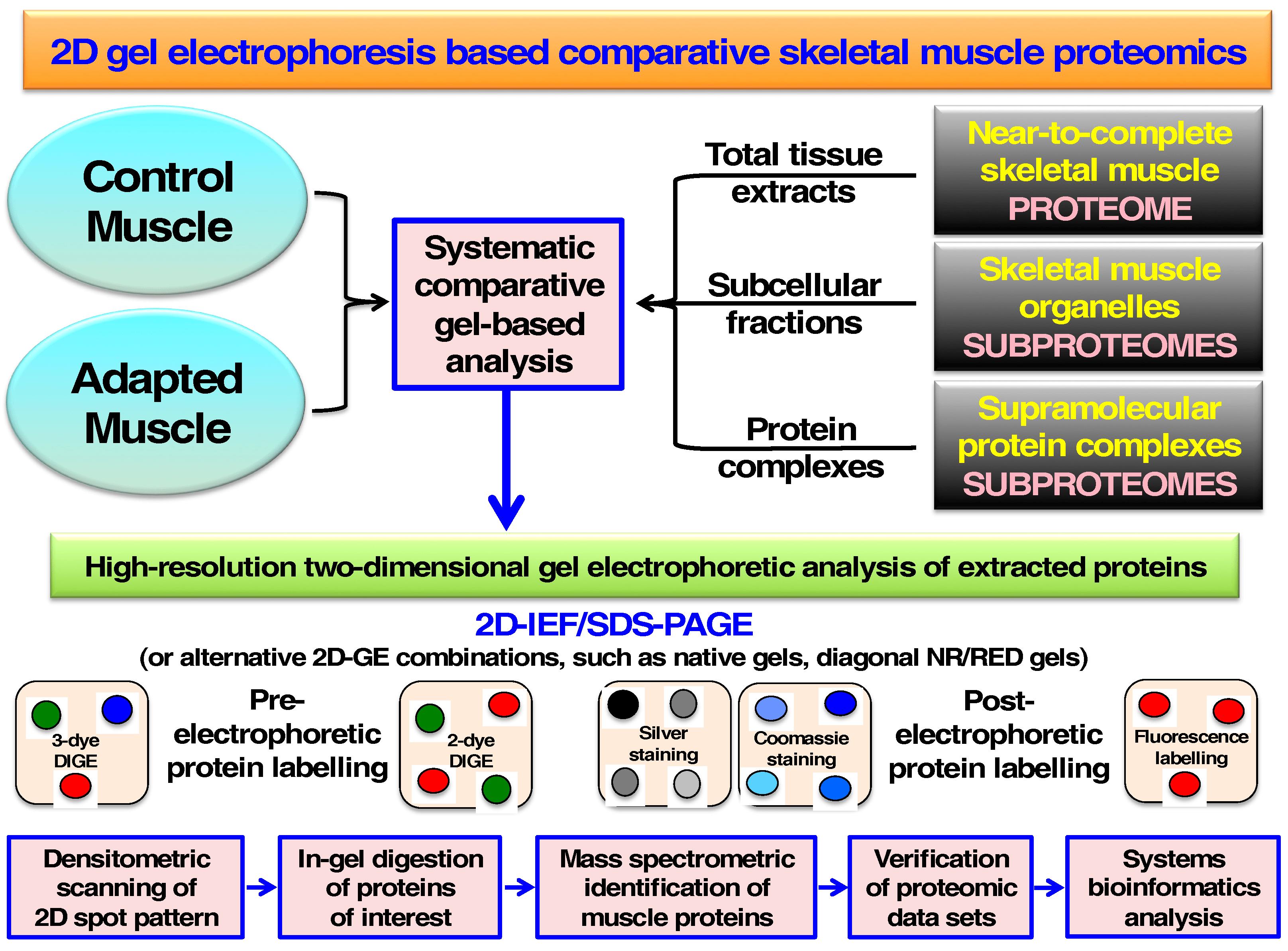 Proteomes