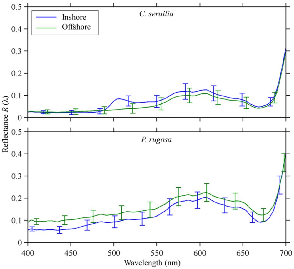 medium resolution of fundamentals of ecology by odum pdf