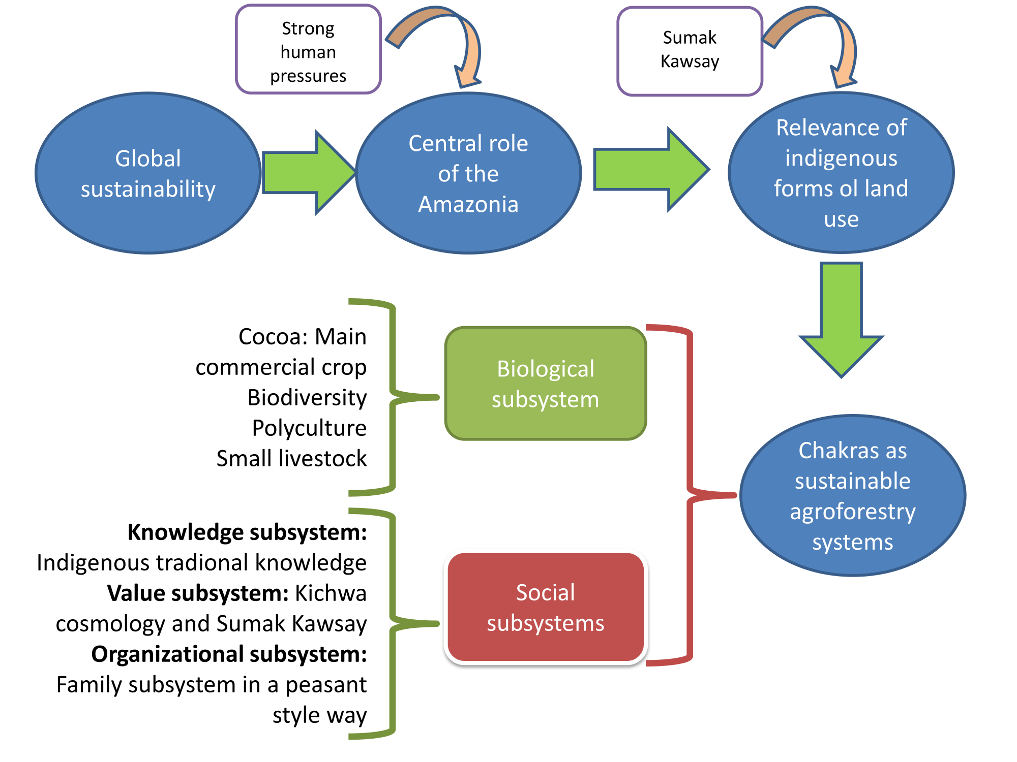 hight resolution of graphical abstract