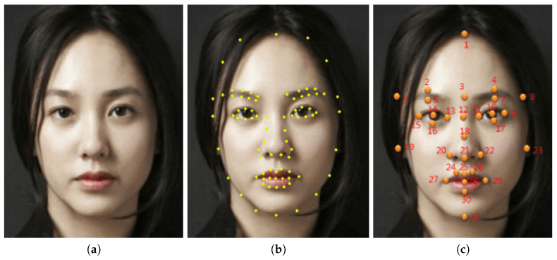 Image result for machine learning faces golden ratio