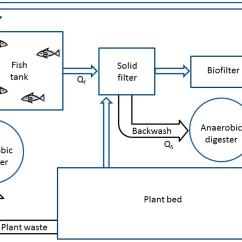 African Elephant Food Chain Diagram Golf Mk5 Wiring Intelli Feed Fish Feeder Diagrams