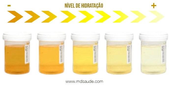 Graus de hidratação da urina - Quanto mais concentrada, mais amarelada.